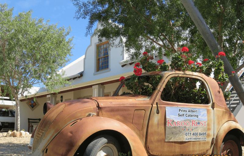 Karoo Rust 1